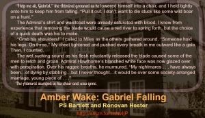 Amber Wake: Gabriel Falling Quote