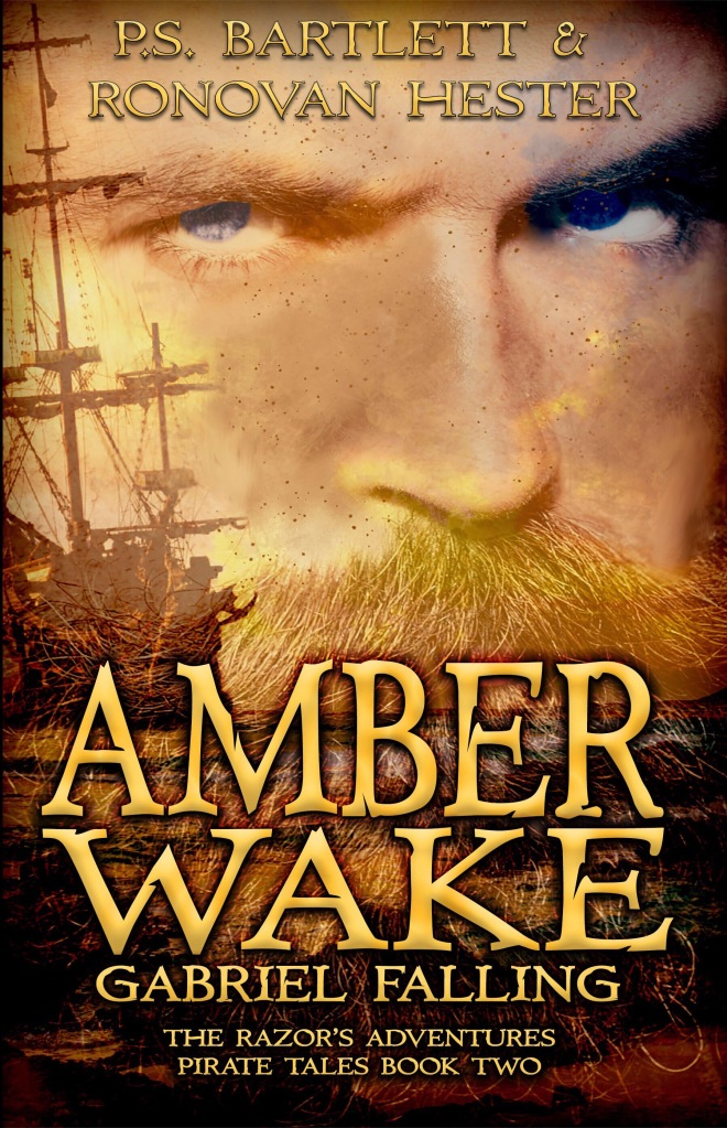 Amber Wake book cover image.